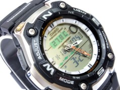 Casio Collection AQW-101-1AVER